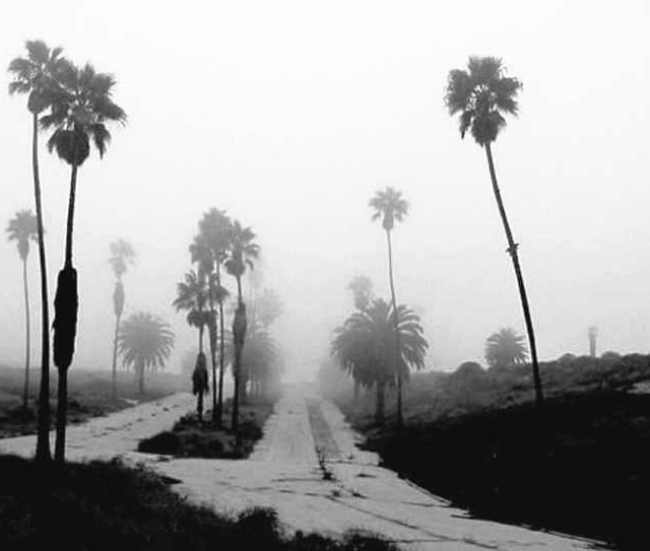 SurfRidge-Closed-Los-Angeles-Ghost-Town