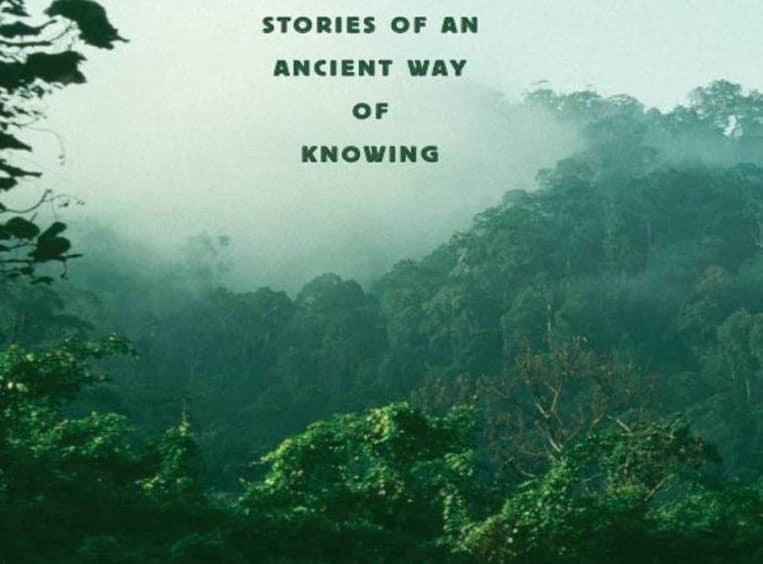 Original-Wisdom-Book-Review-Tres-Bohemes