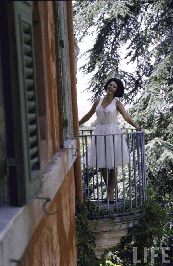 Sophia-Loren9