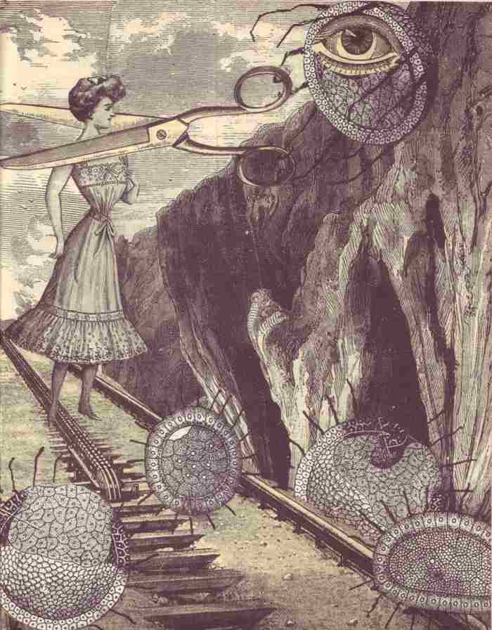 zech-Avant-Garde-Surrealism-Adolf-Hoffmeister-09