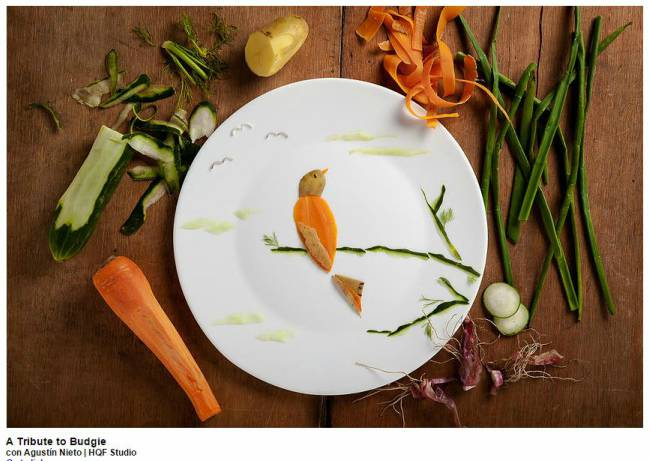 A-Tribute-To-Budgie-Food-Art