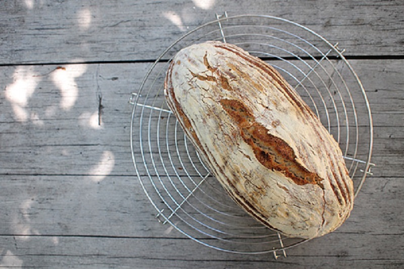 Czech-Bread-from-Rye-Leavening