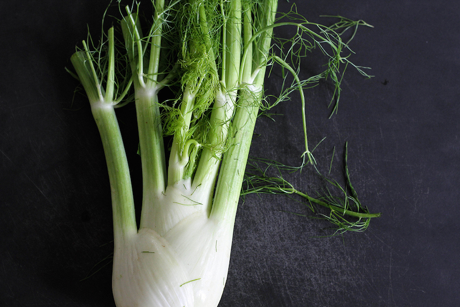 Fennel-Tres-Bohemes