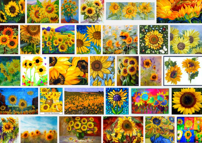 Field-of-Sunflowers-Photo-14