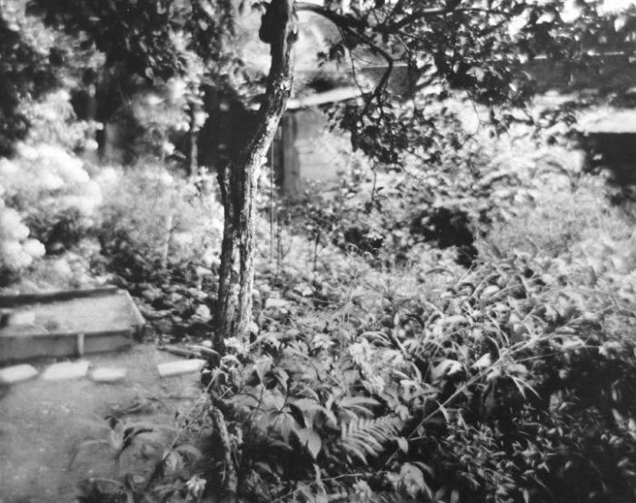 JOSEF SUDEK Photograph