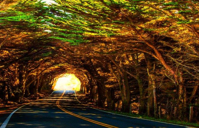 MacKerricher-State-Park-Highway-1-North