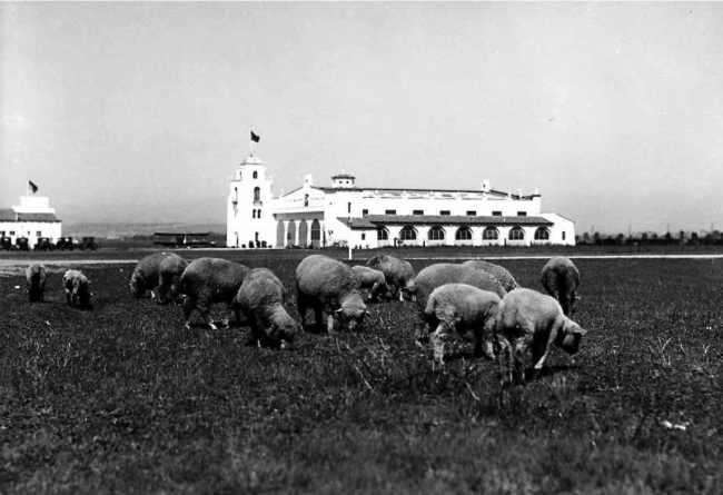 Mines_Field_LAX-1928