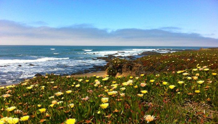 Pacific-Coast-Highway-Northern-California