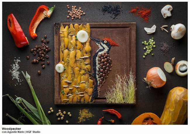Woodpecker-Food-Art
