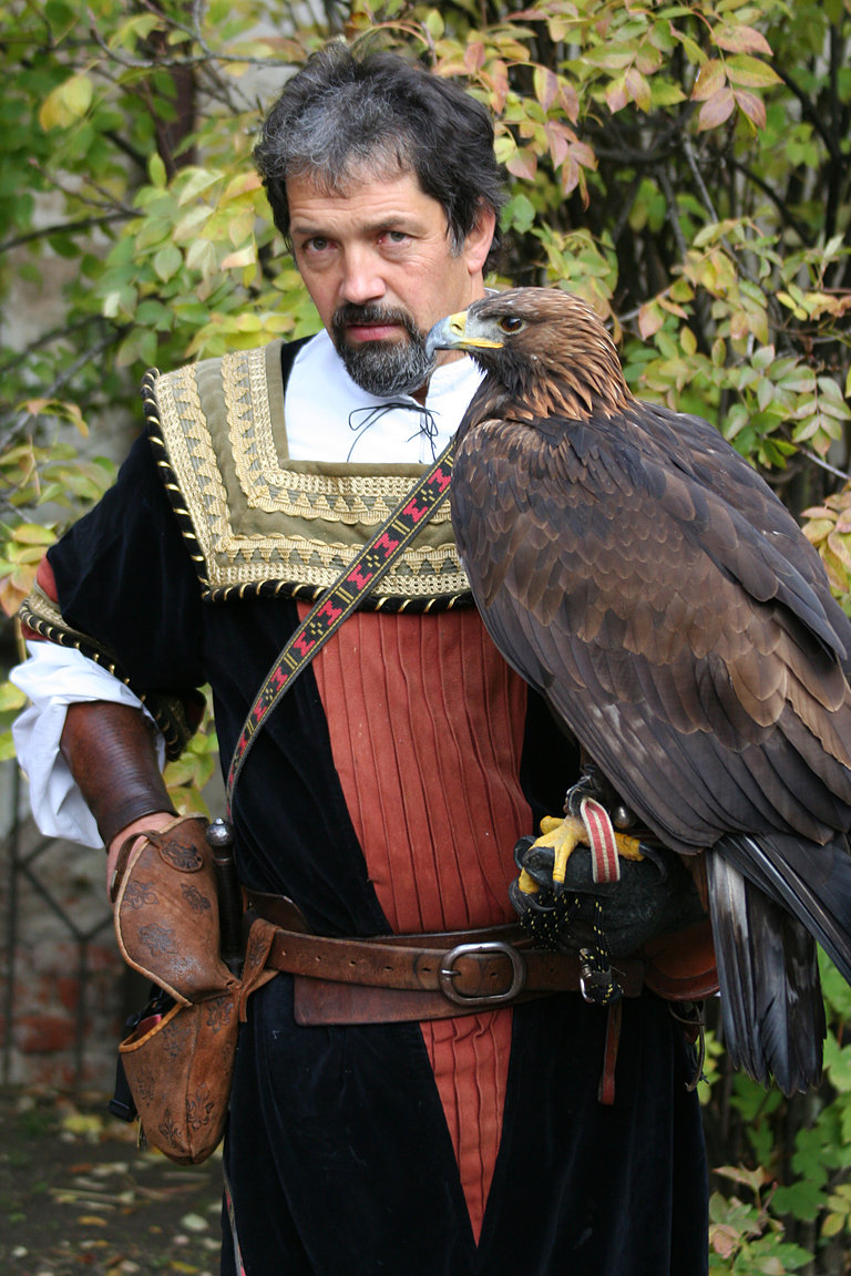 Czech-Falconry-Birds-Hunting-Bohemian-Photo-129