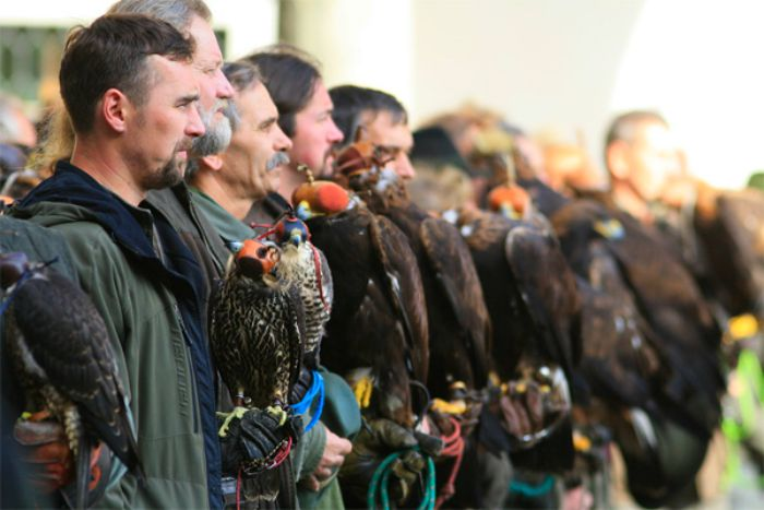 Czech-Falconry-Birds-Hunting-Bohemian-Photo-3