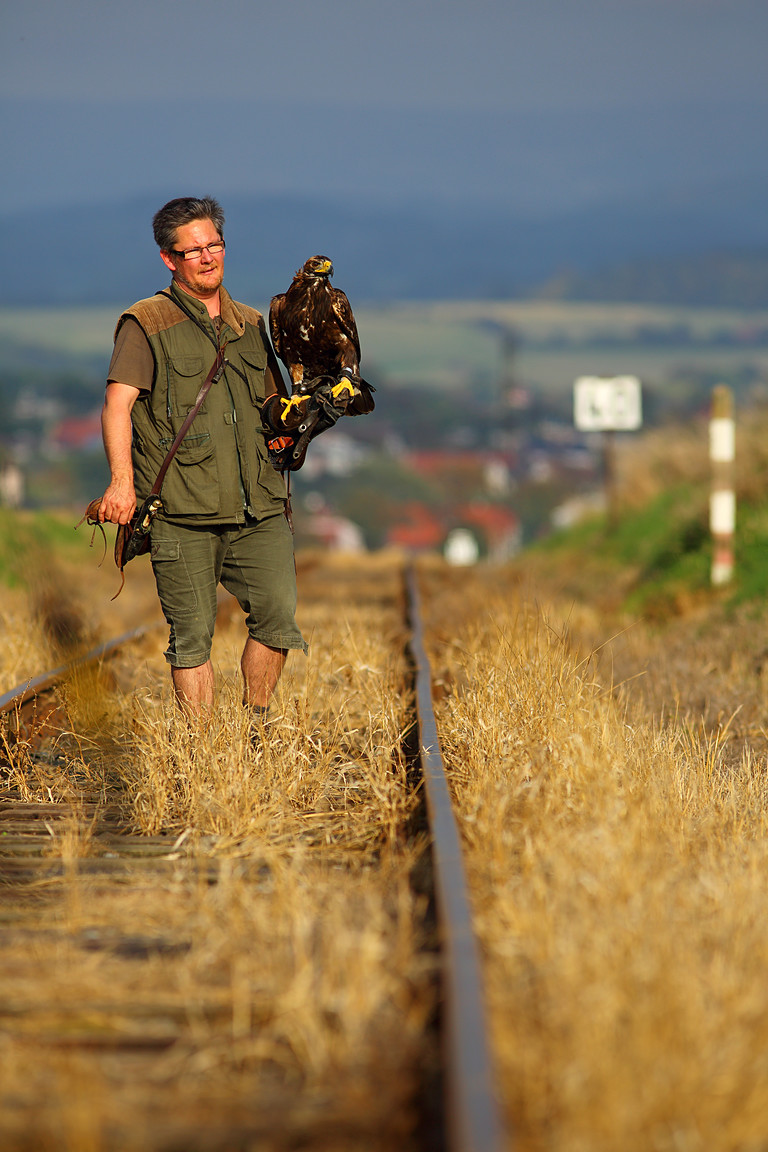 Czech-Falconry-Birds-Hunting-Bohemian-Photo-30