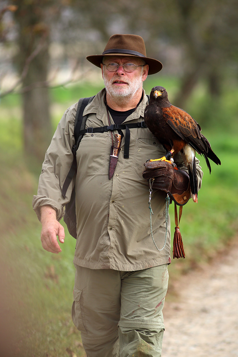 Czech-Falconry-Birds-Hunting-Bohemian-Photo-35
