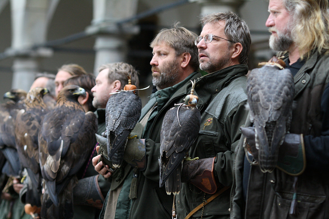 Czech-Falconry-Birds-Hunting-Bohemian-Photo-64