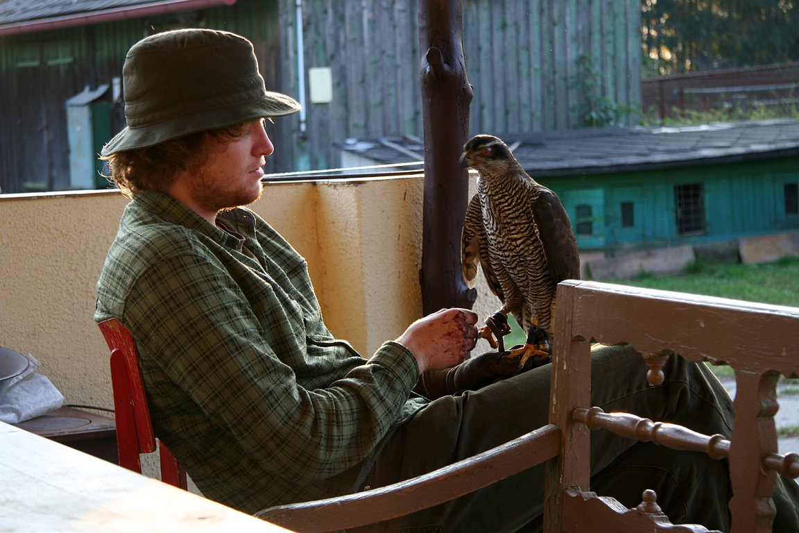 Czech-Falconry-Birds-Hunting-Bohemian-Photo-76