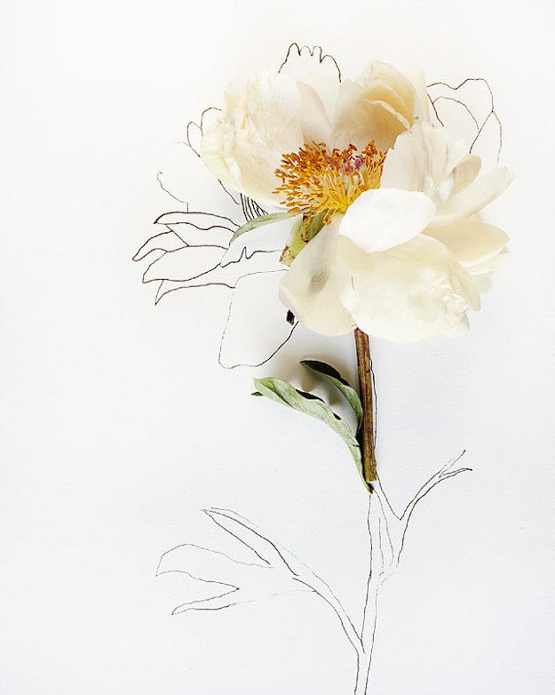 Flower-Tres-Bohemes