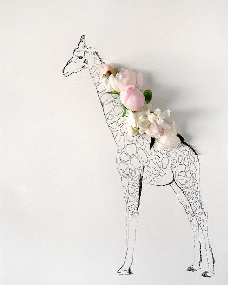 Giraffe-Tres-Bohemes