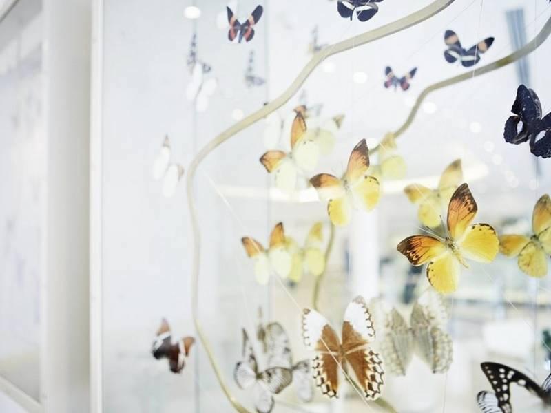Hotel-Josef-Butterflies-Tres-Bohemes
