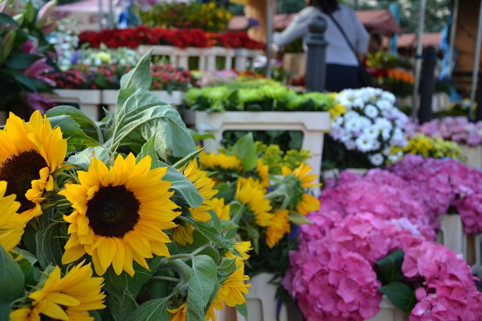 Farmers-Market-Prague-Flowers-2