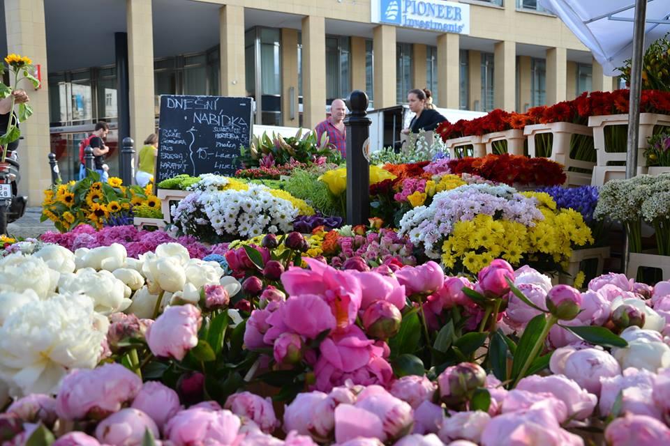 Farmers-Market-Prague-Flowers-3