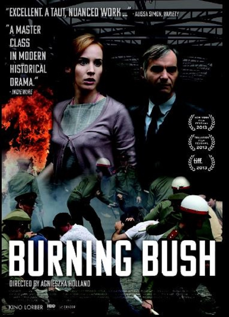 burning-bush-15