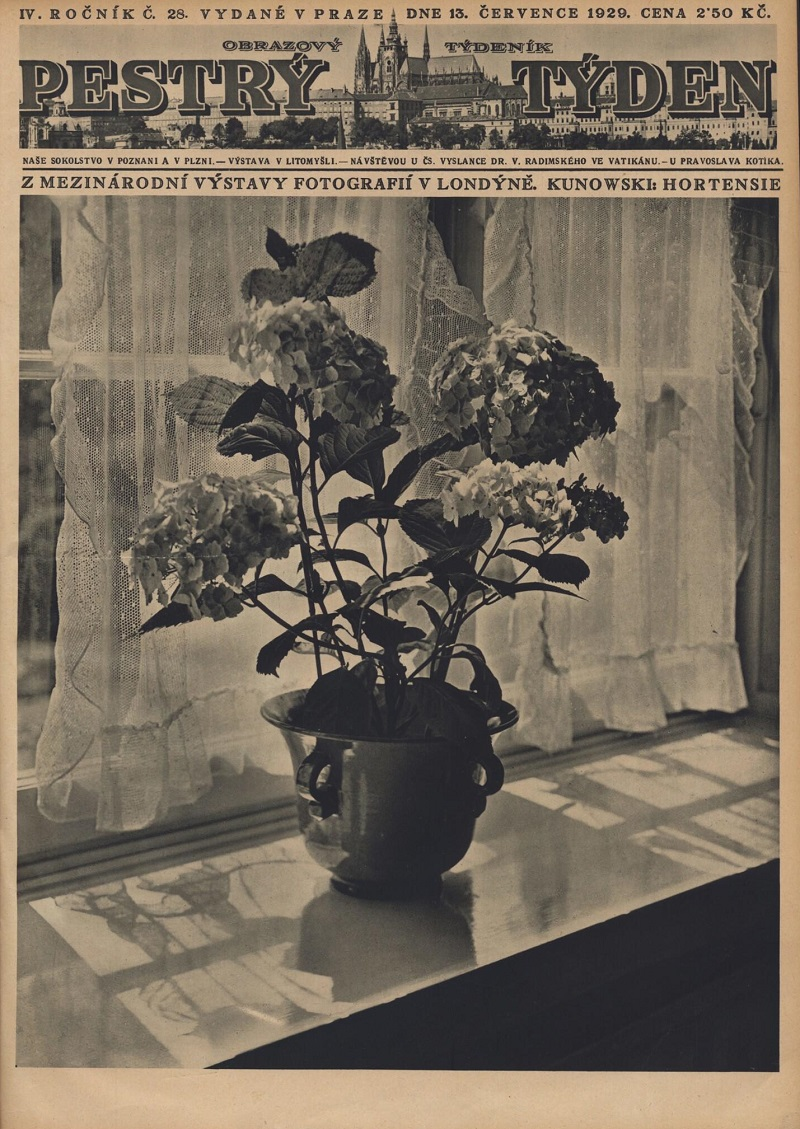 1929_pestry_tyden_year_4_issue_28