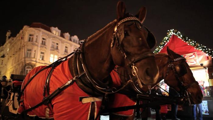 horses-christmas-market-tres-bohemes