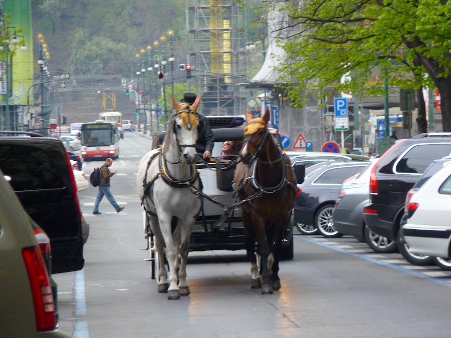horse-drawn-carriage-prague-tres-bohemes-2
