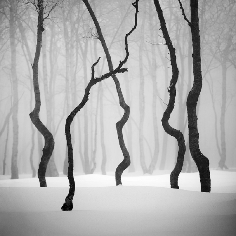 Daniel_Řeřicha-Winter_Wonderland_08