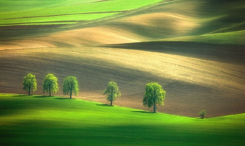 Southern_Moravia_Czech_Reublic_Krzysztof_Browko-12