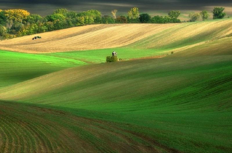 Southern_Moravia_Czech_Reublic_Krzysztof_Browko-13