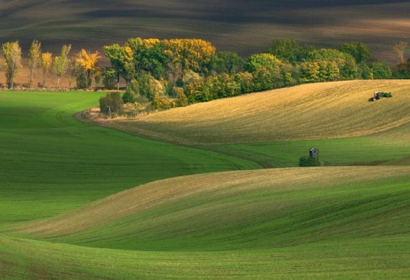 Southern_Moravia_Czech_Reublic_Krzysztof_Browko-14