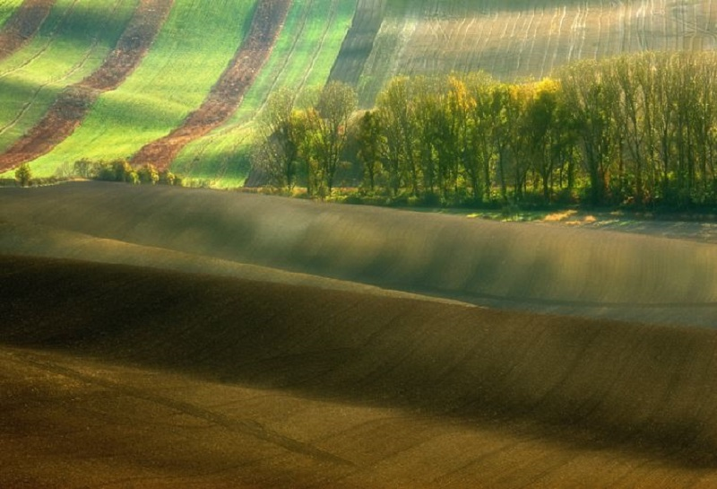 Southern_Moravia_Czech_Reublic_Krzysztof_Browko-15