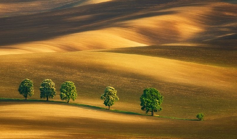 Southern_Moravia_Czech_Reublic_Krzysztof_Browko-18