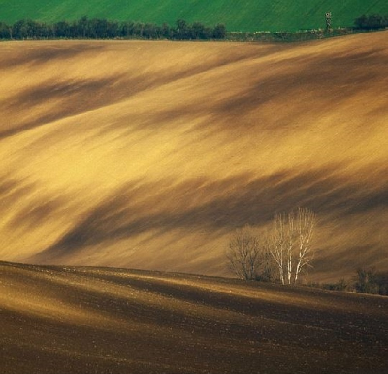 Southern_Moravia_Czech_Reublic_Krzysztof_Browko-19