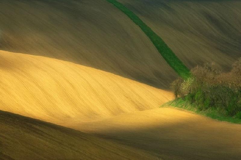 Southern_Moravia_Czech_Reublic_Krzysztof_Browko-21