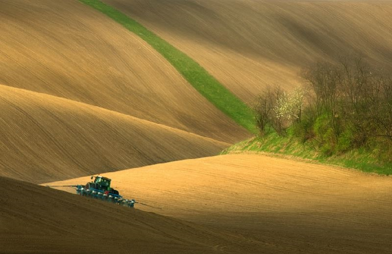 Southern_Moravia_Czech_Reublic_Krzysztof_Browko-22