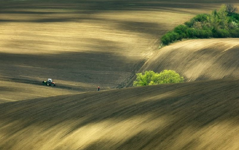 Southern_Moravia_Czech_Reublic_Krzysztof_Browko-27