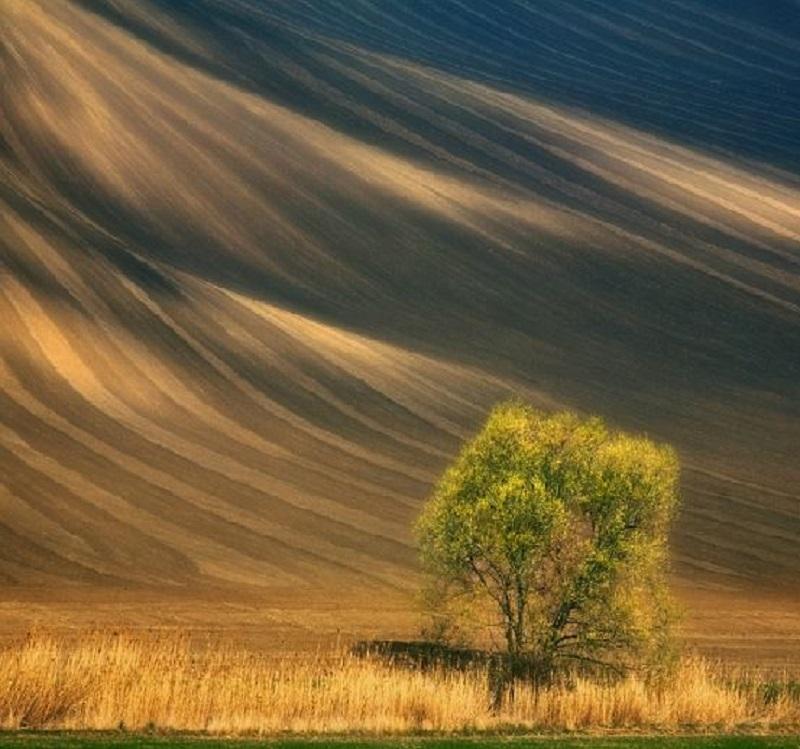 Southern_Moravia_Czech_Reublic_Krzysztof_Browko-28