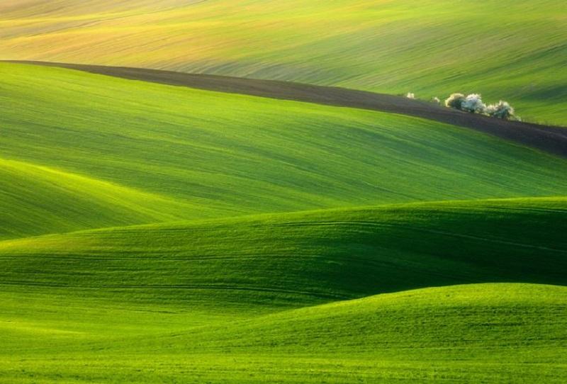 Southern_Moravia_Czech_Reublic_Krzysztof_Browko-3