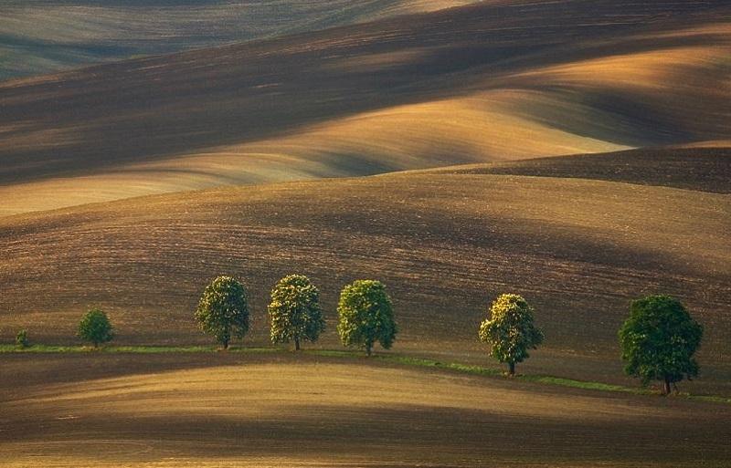 Southern_Moravia_Czech_Reublic_Krzysztof_Browko-30