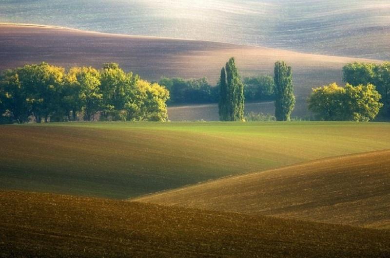 Southern_Moravia_Czech_Reublic_Krzysztof_Browko-32