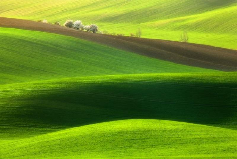 Southern_Moravia_Czech_Reublic_Krzysztof_Browko-4