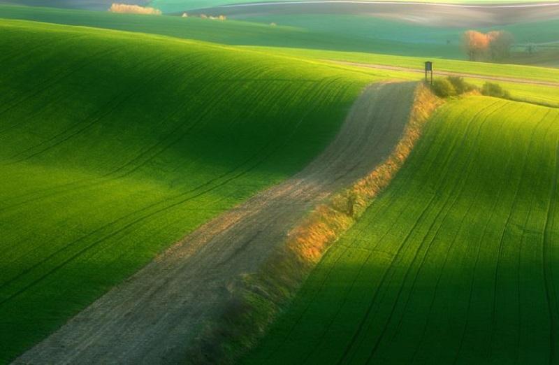 Southern_Moravia_Czech_Reublic_Krzysztof_Browko-5