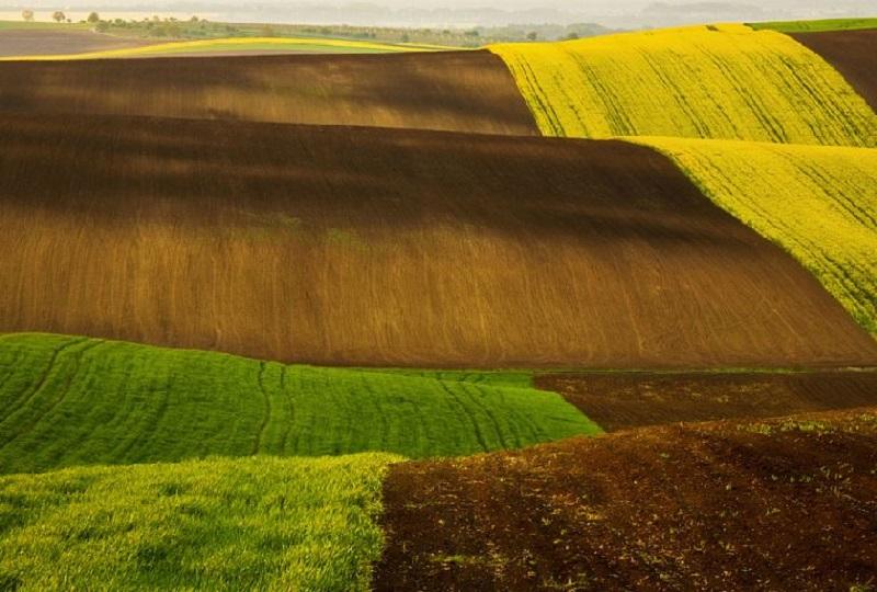 Southern_Moravia_Czech_Reublic_Krzysztof_Browko-7