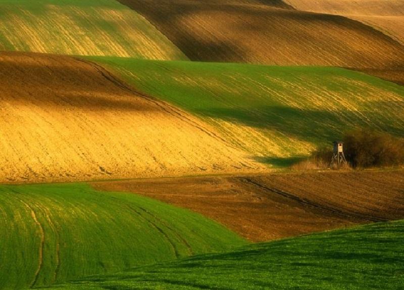 Southern_Moravia_Czech_Reublic_Krzysztof_Browko-8