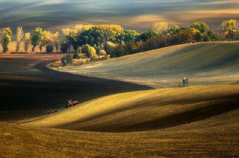 Southern_Moravia_Czech_Reublic_Krzysztof_Browko_R-10