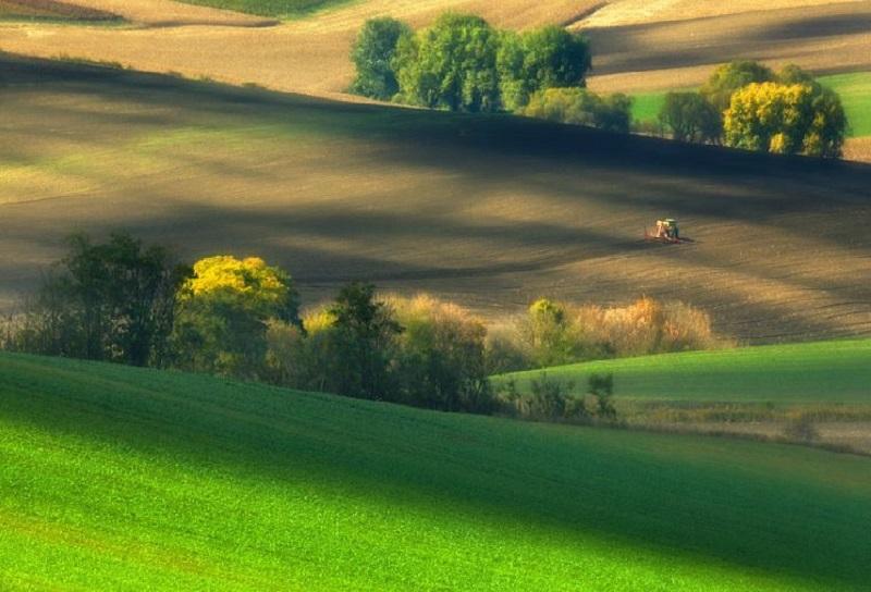 Southern_Moravia_Czech_Reublic_Krzysztof_Browko_R-12