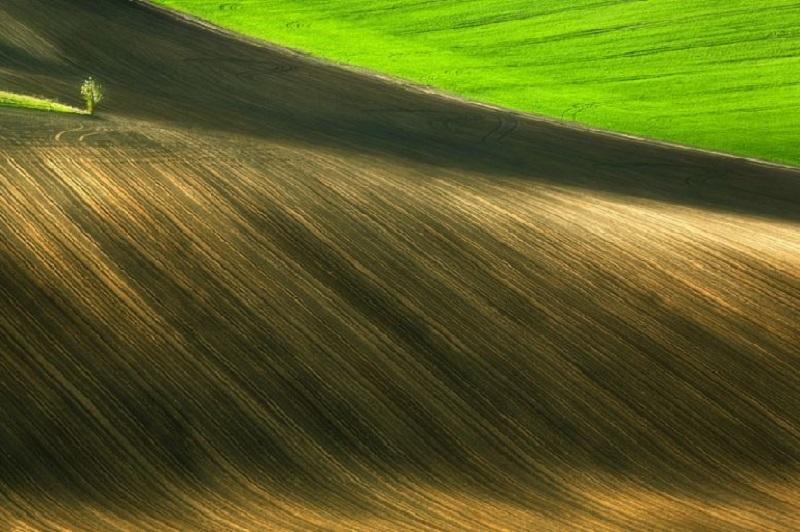 Southern_Moravia_Czech_Reublic_Krzysztof_Browko-R-13