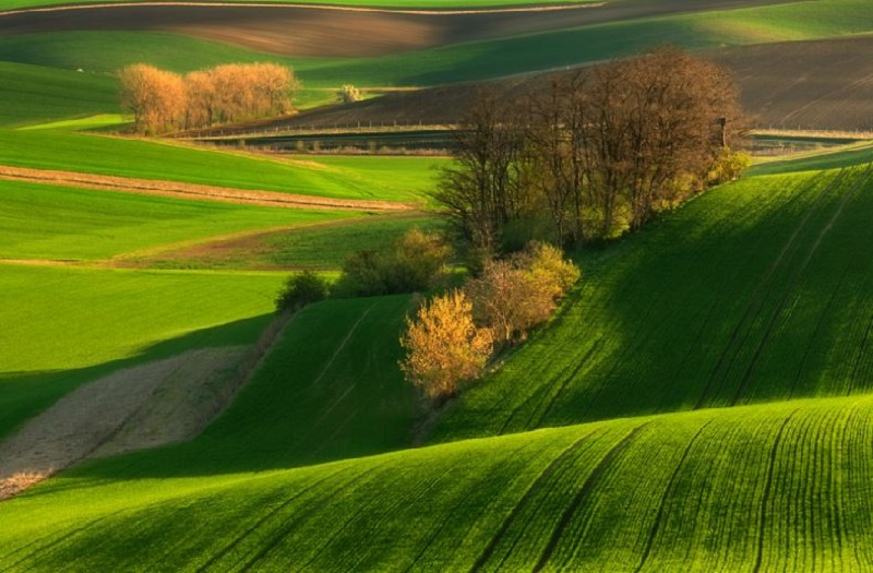 Southern_Moravia_Czech_Reublic_Krzysztof_Browko_R-5